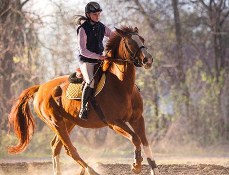 Corso di equitazione di un mese