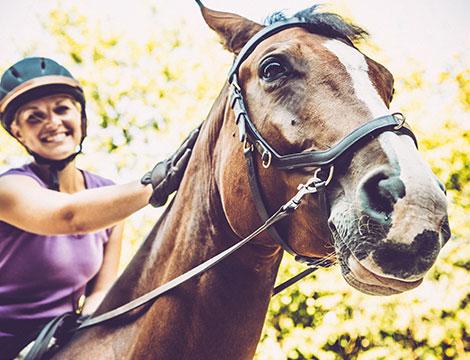 3 lezioni di equitazione per adulti e bambini
