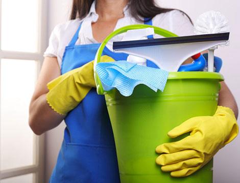 professionisti del pulito 7 giorni su 7