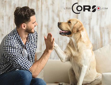 Come addestrare il proprio cane_N
