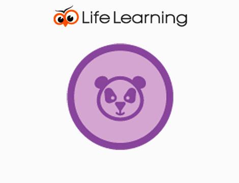 Realizzare un Sito Internet Google Panda Friendly