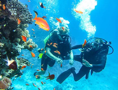 Corso di sub padi discover suba diving