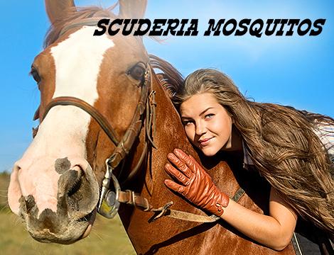 lezioni e passegiata da Mosquitos_N