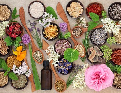 Visita naturopatica, consulenza nutrizionale olistica e test intolleranze alimentari
