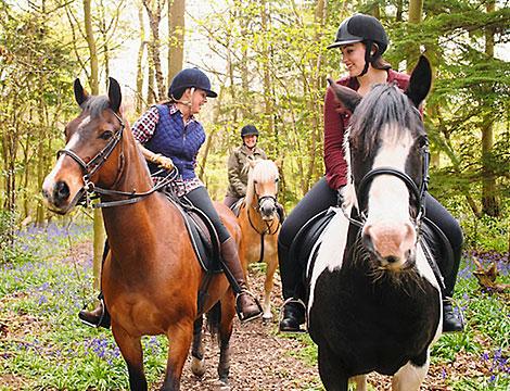 Passeggiata a cavallo ASD La Staffa