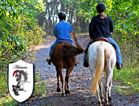 Passeggiata a cavallo nel Casentino con degustazione