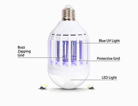 2 o 3 Zapp Light