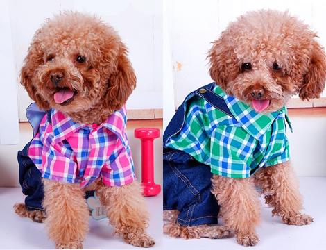 Offerta shopping 2 vestitini per cani di piccola taglia for Marsupio per cani di piccola taglia