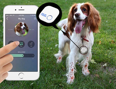 NUT 2 Bluetooth Tracker Anti Smarrimento Bambini Cellulari Animali GPS