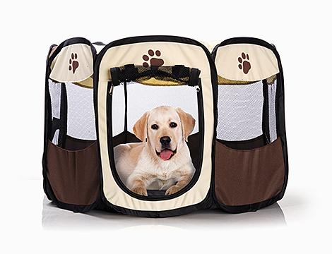 Box pop up per cuccioli D-Mail