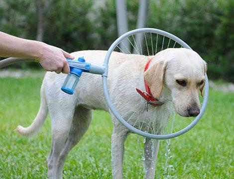 Doccia a 360° per animali domestici_N