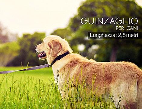 Guinzaglio per cani GRATIS_N