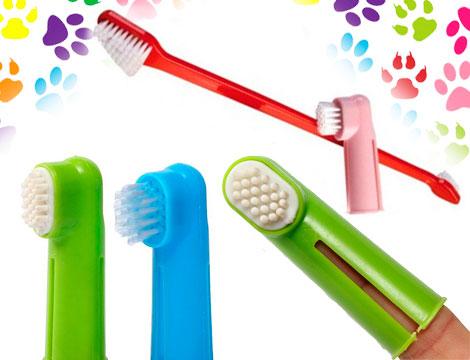 kit 3 spazzolini pulizia denti animali GRATIS_N
