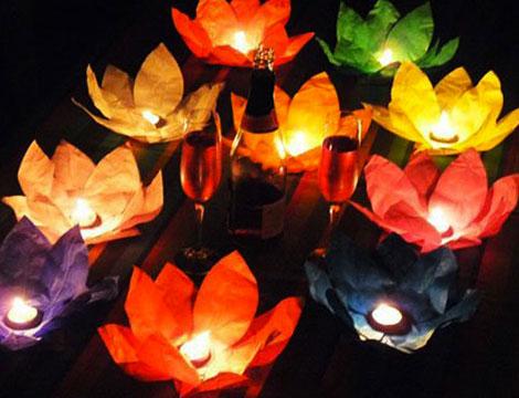 Fino a 12 fiori di loto galleggianti