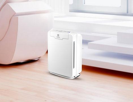 Purificatore aria Electrolux Oxigen 150
