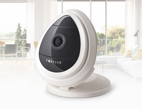 100 Forever IP Camera