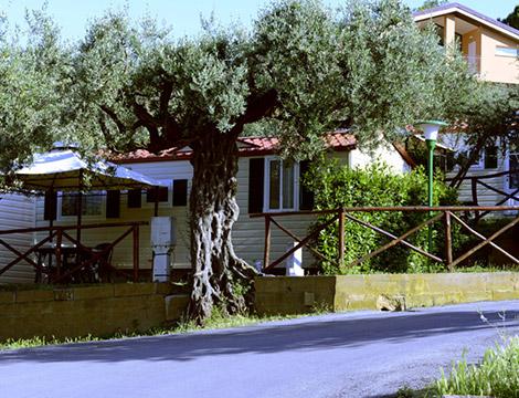 Europe Garden 7 notti in Residence