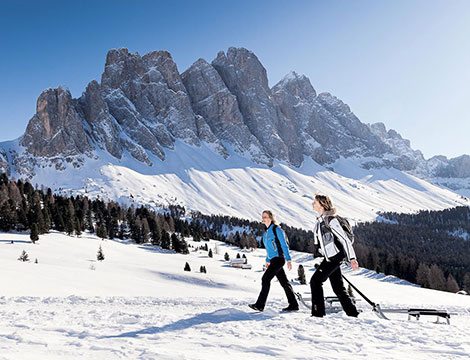 Alto Adige e Tirolo: tour in bus