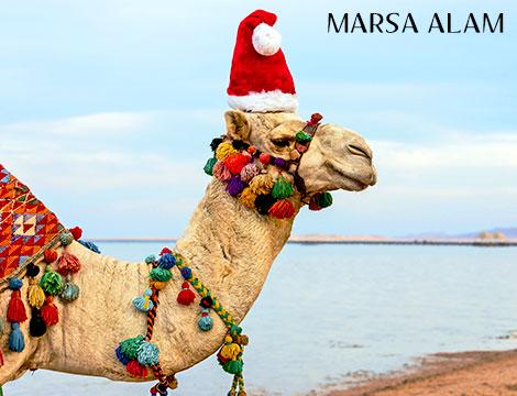 Natale a Marsa Alam 7 notti in 4 stelle