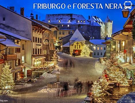Tour in bus Friburgo e Foresta Nera