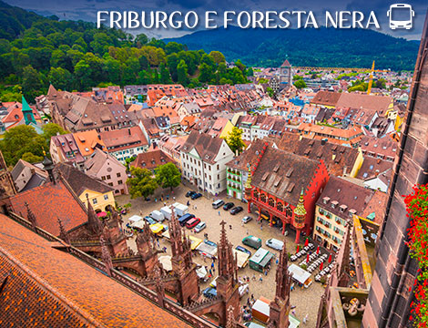 Tour in bus Friburgo e Foresta Nera