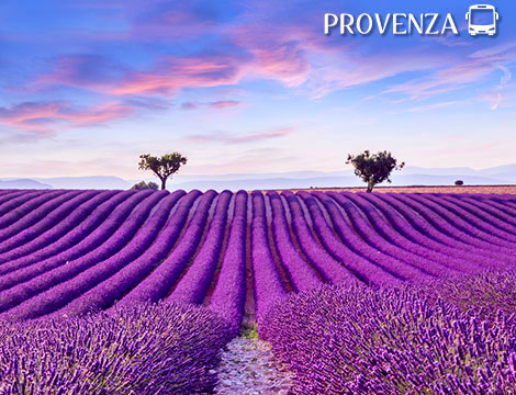 Tour in bus in Provenza a 299euro